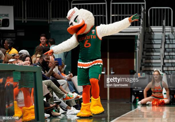 Miami mascot Sebastian the Ibis performs during a women's college basketball game between the Wake Forest University Demon Deacons and the University...