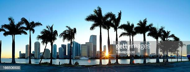 Miami skyline viewed over marina