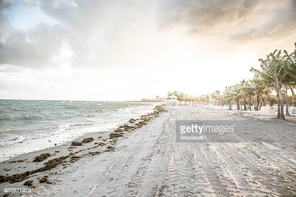 USA, Miami, view to beach of Key Biscayne on a stormy day