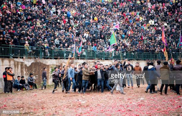 Miao and Dong people lead a bull ahead of a bullfight competition on December 14 2017 in QianDongnan Miao and Dong Autonomous Prefecture Guizhou...