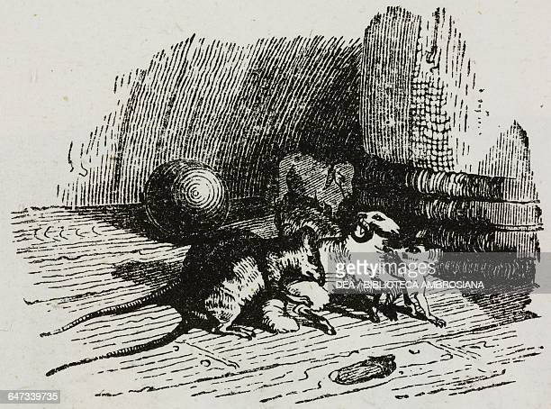 Mice attacking a Lilliputian sheep on the ship bringing Gulliver home illustration from Chapter Eight Part I A Voyage to Lilliput Gulliver's travels...
