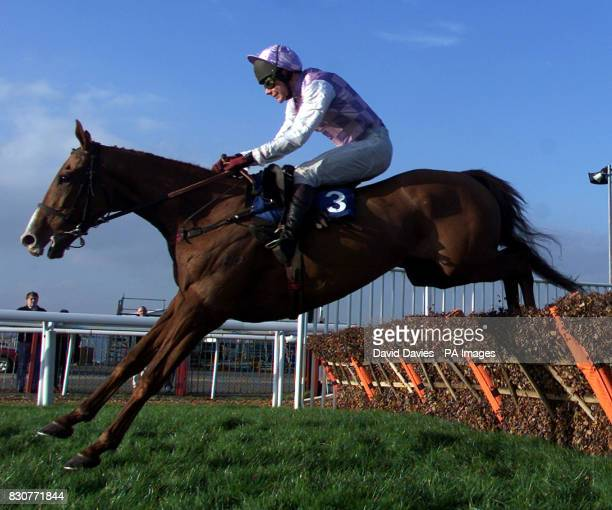 Michael Anthony Fitzgerald riding Brother Joe at Cheltenham racecourse Photo David Davies