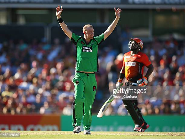 Michael Beer of the Melbourne Stars celebrates the wicket of Michael Carberry of the Scorchers during the Big Bash League Semi Final match between...