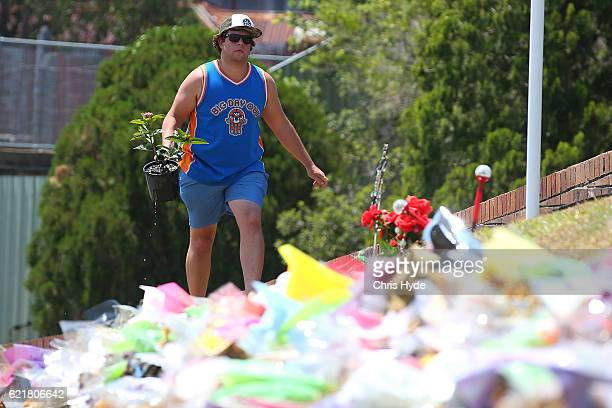 Michael Bemrose from the Gold Coast places a plant at the memorial site out the front of Dreamworld on November 9 2016 in Gold Coast Australia The...