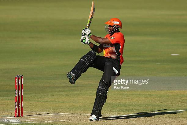 Michael Carberry of the Scorchers bats during the Big Bash League match between the Perth Scorchers and Adelaide Strikers at WACA on December 22 2014...