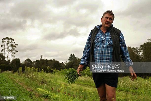 Michael Champion on his farm 'Champion Organics' in Mangrove Mountain NSW 15 October 2008