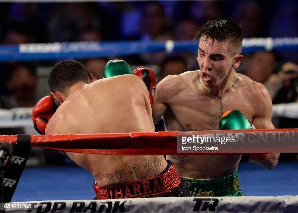 Michael Conlan battles Tim Ibarra during their Super Bantamweight bout on March 17 2017 at the The Theater at Madison Square Garden in New York City...