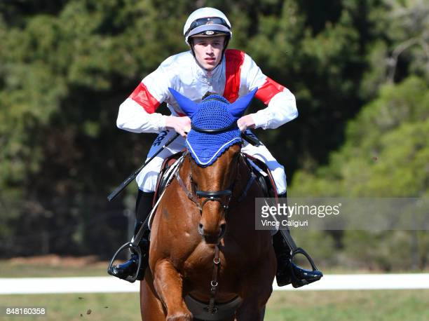 Michael Dee is seen in the warm up area before competing in the AllStars Jockey Challenge as part of the Australian Showjumping Championships on...