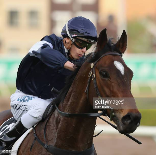 Michael Dee on Foundry returns to scale after winning race 8 the Metropolitan during Sydney Racing at Royal Randwick Racecourse on September 30 2017...