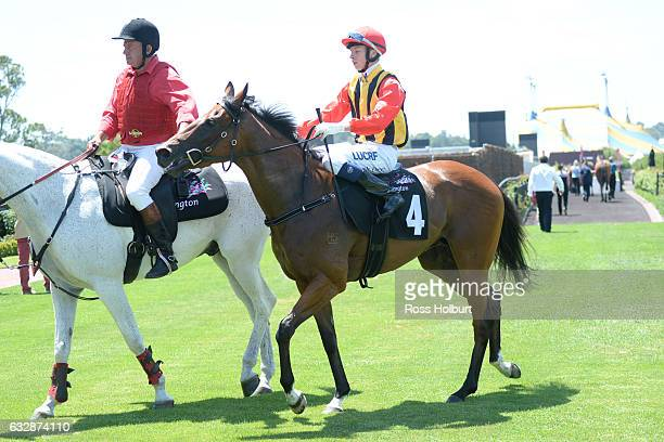 Michael Dee returns to the mounting yard on Navagio after winning Doriemus Handicap at Flemington Racecourse on January 28 2017 in Flemington...