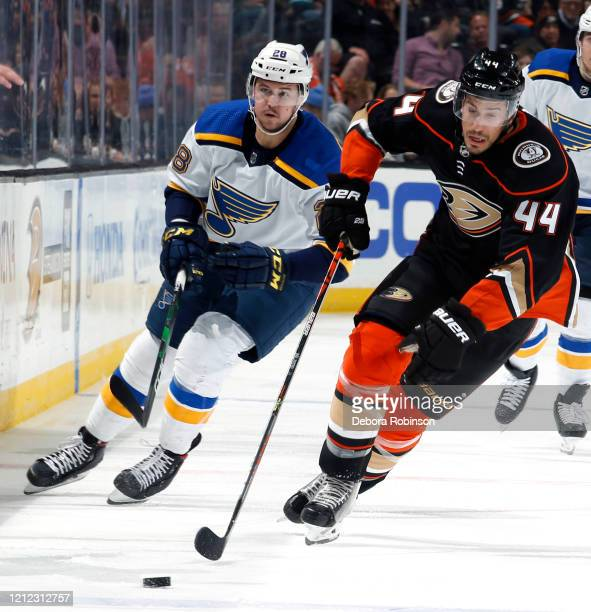 Michael Del Zotto of the Anaheim Ducks skates with the puck with pressure from Mackenzie MacEachern of the St Louis Blues during the game at Honda...