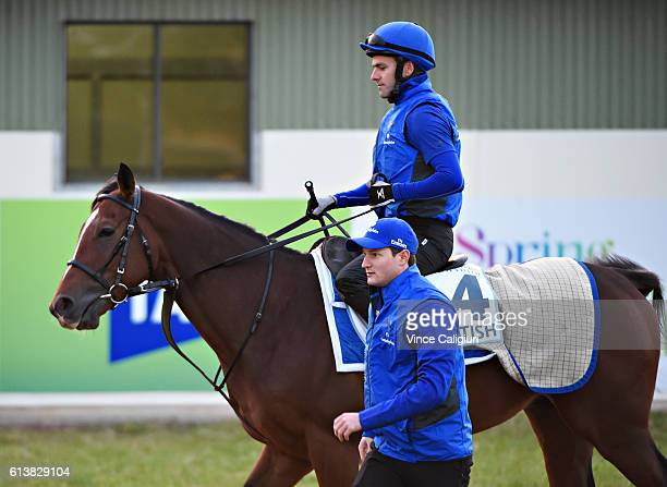Michael Ennis riding Scottish before a trackwork session at Werribee Racecourse on October 11 2016 in Melbourne Australia