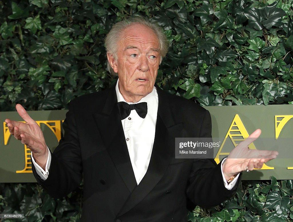 The London Evening Standard Theatre Awards - Red Carpet Arrivals : ニュース写真