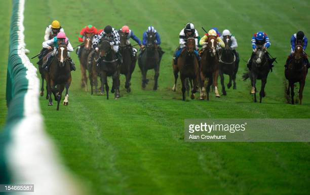 Michael Hills riding Desert Image win The Thoroughbred Breeders' Association Median Auction Maiden Fillies' Stakes at Newmarket racecourse on October...