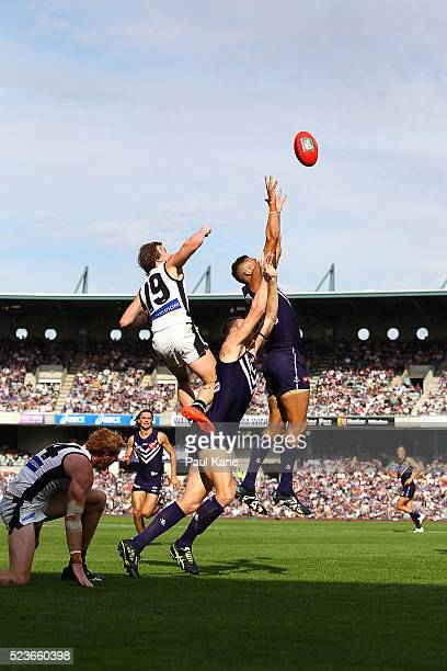 Michael Johnson of the Dockers sets for a mark during the round five AFL match between the Fremantle Dockers and the Carlton Blues at Domain Stadium...