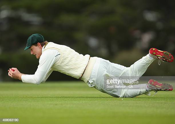 Michael Jones of Tasmania takes a catch to dismiss Alex Carey of South Australia during the Futures League match between Tasmania and South Australia...