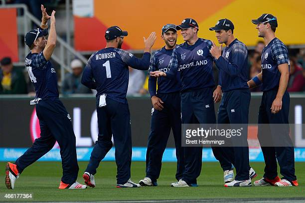 Michael Leask of Scotland celebrates after taking a catch to dismiss Michael Clarke of Australia during the 2015 Cricket World Cup match between...