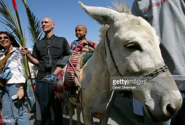 Michael Mackelroy from New South Wales in Australia accompanies his John who rides a white donkey during the traditional Palm Sunday procession along...