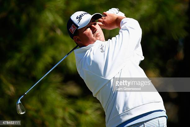 Michael Putnam hits a tee shot on the 8th hole during the first round of the Valspar Championship at Innisbrook Resort and Golf Club on March 13 2014...