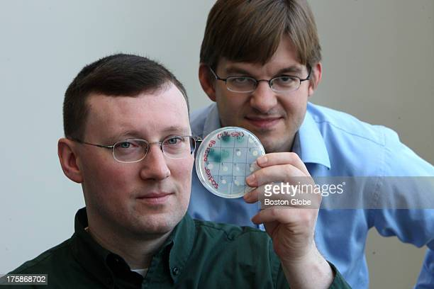 Michael Raab PhD left president and Jeremy Johnson PhD vice president right of Agrivida with plate that screens for good enzymes which they will go...