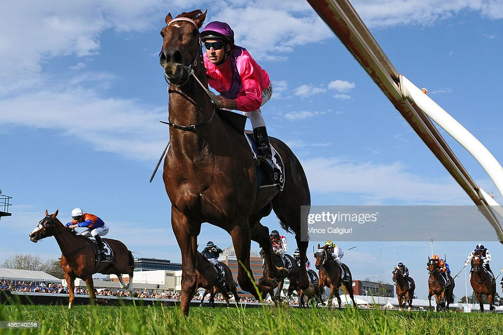 Michael Rodd riding Rich Enuff defeats Damian Browne riding Looks Like the Cat in Race 6, the Becks Caulfield Guineas prelude during Melbourne Racing at Caulfield Racecourse on September 28, 2014 in Melbourne, Australia.