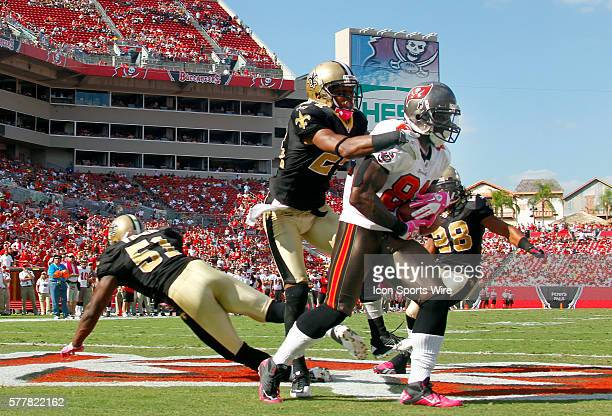 Michael Spurlock of the Tampa Bay Buccaneers catches a touchdown pass from Josh Freeman late in the fourth quarter during the game between the New...