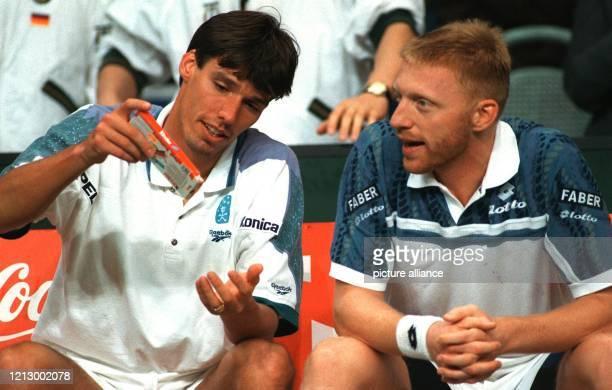 Michael Stich und Boris Becker führten durch einen 41Sieg in Utrecht gegen Gastgeber Niederlande das deutsche DaviscupTeam in das Halbfinale in dem...
