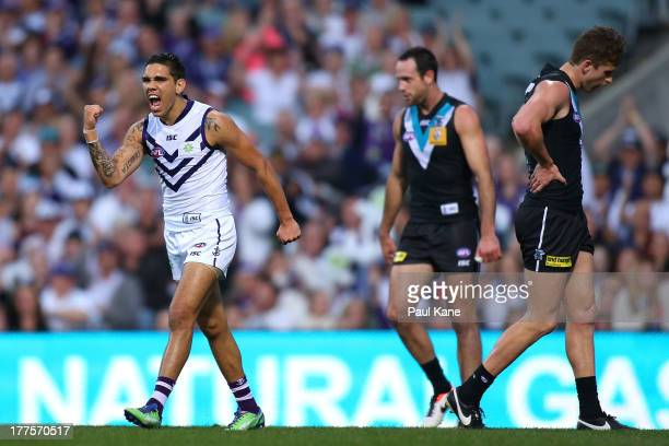 Michael Walters of the Dockers celebrates a goal during the round 22 AFL match between the Fremantle Dockers and Port Adelaide Power at Patersons...