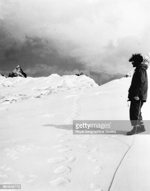 Michael Ward with 'yeti' footprints These footprints were discovered on the descent from the Menlung La at about 1600017000 feet Nepal August 1951...