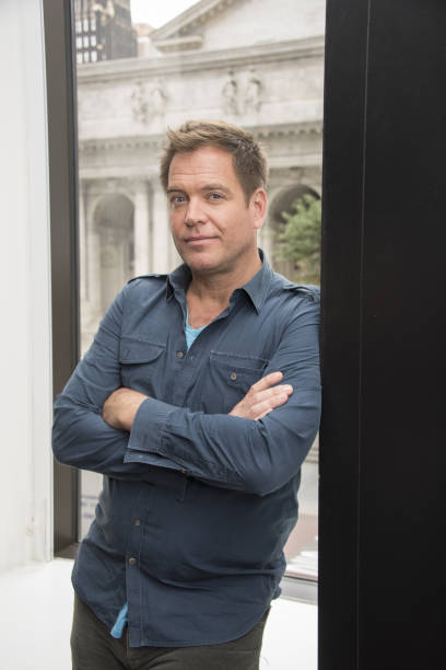 Pictures Of Michael Weatherly