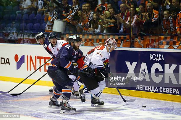 Michal Buril of Bili Tigry Liberec handles the puck during the Champions  Hockey League group stage 88090b17b98
