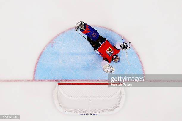 Michal Vapenka of the Czech Republic celebrates after a goal was scored by Tomas Kvoch during the Ice Sledge Hockey Classification match between...