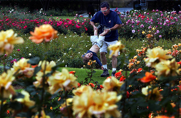 Micheal Golden plays with his son, Michael John, 2, in the rose ...