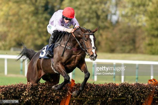 Micheal Nolan riding Cotswold Way on their way to winning The Alconbury Maiden Hurdle at Huntingdon Racecourse on October 16 2018 in Huntingdon...