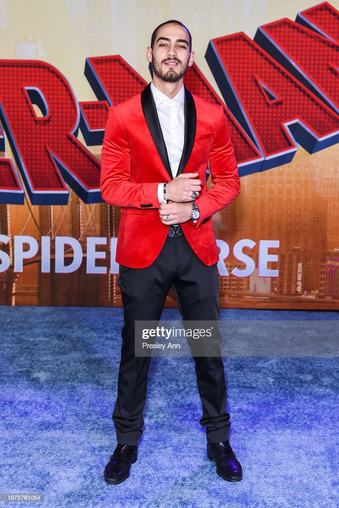 https://media.gettyimages.com/photos/michel-duval-attends-world-premiere-of-sony-pictures-animation-and-picture-id1075791054
