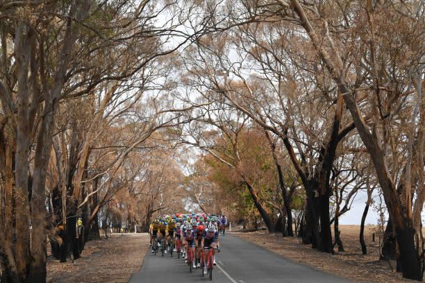 AUS: 22nd Santos Tour Down Under 2020 - Stage 4