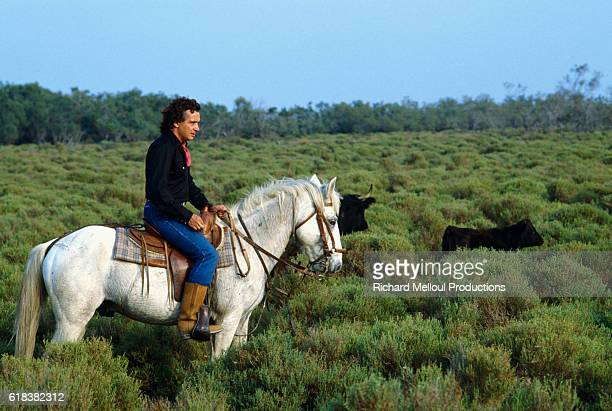 Michel Sardou Riding Horse in Camargue