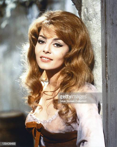 Michele Mercier French actress wearing a brown bustier trimmed with white lace in a publicity portrait issued for one of the 'Angelique' films in...
