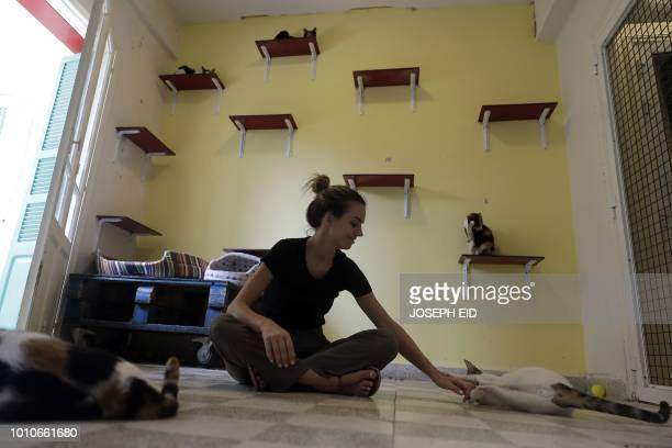 Michelle a worker at Animals Lebanon NGO cat shelter plays with cats at the shelter in Beirut on August 3 2018 International cat day is celebrated on...