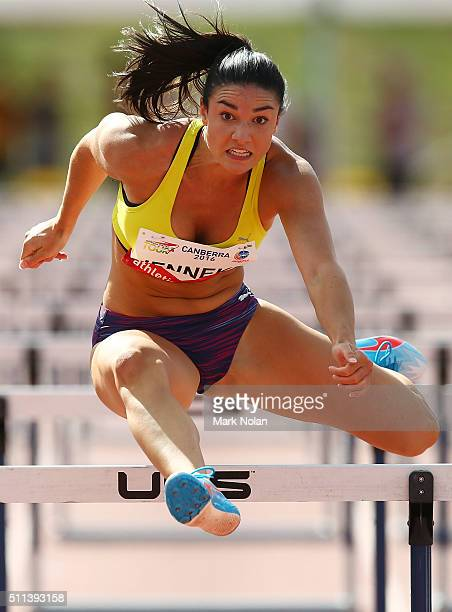 Michelle Jenneke of NSW competes in the Womens 100 Metre Hurdles during the Canberra Track Classic at the AIS Athletics track February 20 2016 in...