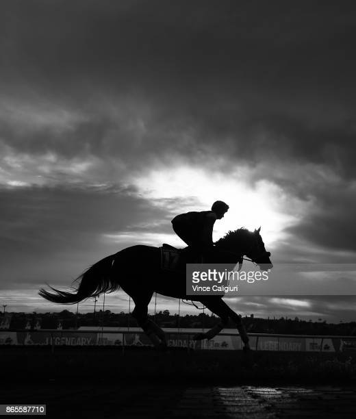 Michelle Payne riding Kaspersky during a trackwork session during Breakfast With The Stars at Moonee Valley Racecourse on October 24 2017 in...
