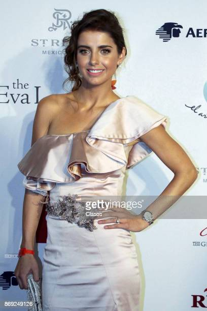 Michelle Renaud poses during the red carpet of The Global Gift Gala at St Regis Hotel on November 01 2017 in Mexico City Mexico