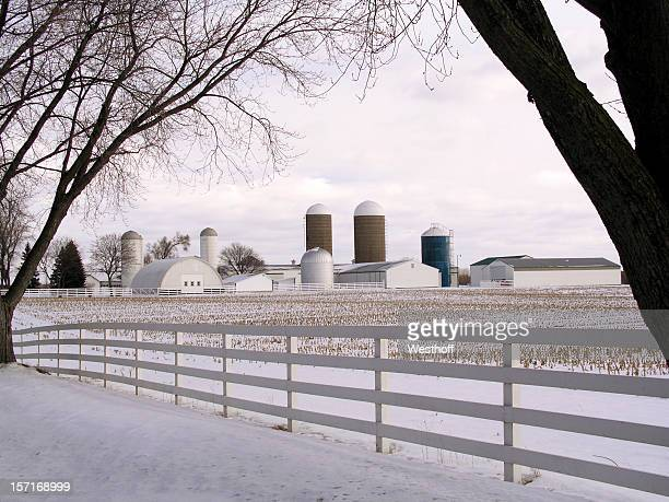 Michigan Farm in Winter