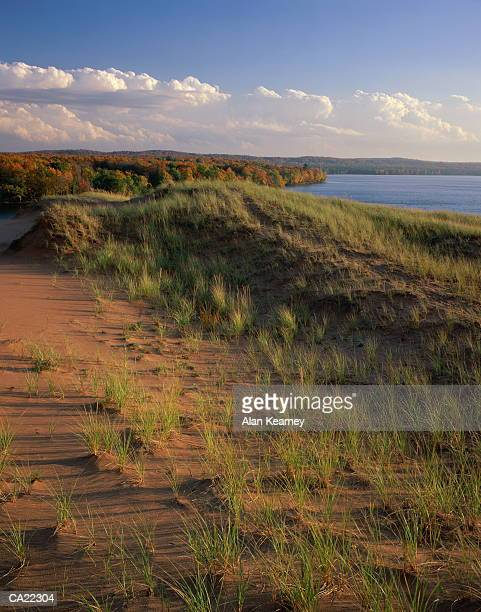 usa, michigan, grand sable dunes, autumn - pictured rocks national lakeshore stock pictures, royalty-free photos & images