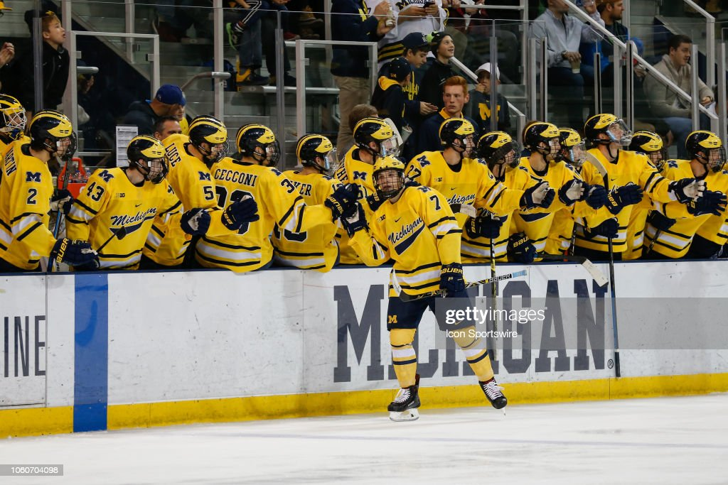 COLLEGE HOCKEY: NOV 10 Notre Dame at Michigan : News Photo