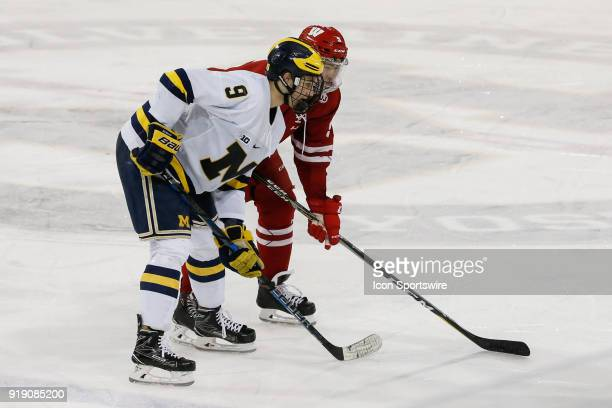 Michigan Wolverines forward Josh Norris and Wisconsin Badgers defenseman Tyler Inamoto wait for a faceoff during a regular season Big 10 Conference...