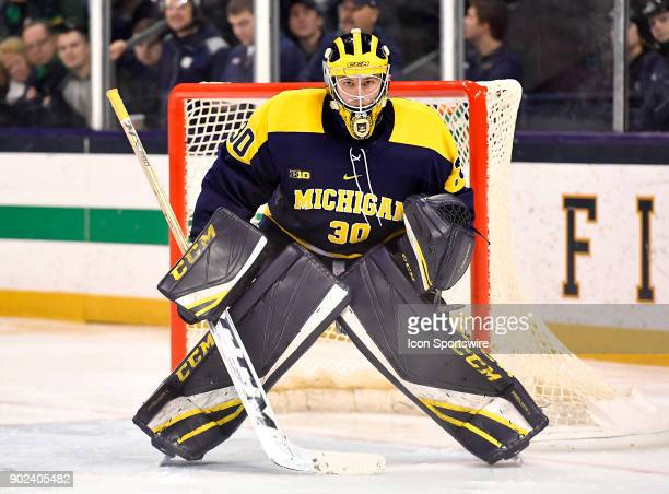 Michigan Wolverines goaltender Hayden Lavigne defends the goal during the game between the Notre Dame Fighting Irish and the Michigan Wolverines on...