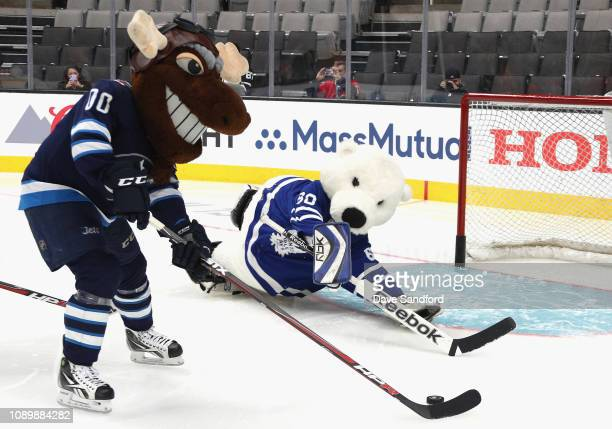 Mick E Moose of the Winnipeg Jets and Carlton the Bear of the Toronto Maple Leafs participate in the the 2019 NHL AllStar Mascot Showdown at the SAP...