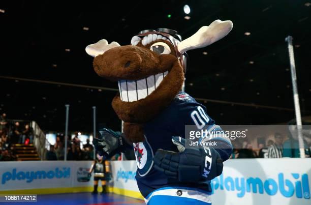 Mick E Moose of the Winnipeg Jets participates in the 2019 NHL AllStar Mascot Showdown on January 24 2019 in San Jose California