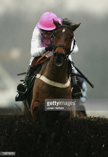 Mick Fitzgerald and Ungaro clear the last fence to land The Feltham Novices Steeple Chase Race at Kempton Racecourse on December 26, 2006 in Kempton,...